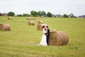 Bride And Groom Near Hay