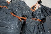Garden rubbish bin bags.