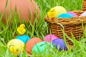 Easter Eggs And Chicks In The Grass