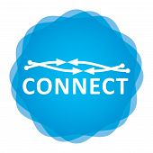 Connetion Icon