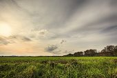 Hdr Shoot Of A Landscape With Field And The Sun