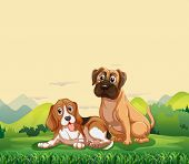 Illustration of two dogs sitting on the lawn