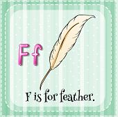 Illustration of a letter F is for feather