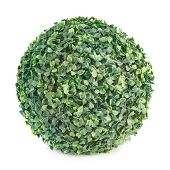 Green leaves sphere isolated