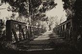 Old abandoned road bridge
