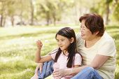 pic of granddaughter  - Asian grandmother and granddaughter blowing bubbles in park - JPG