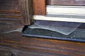 pic of spiderwebs  - close up of a windowsill with spiderweb - JPG