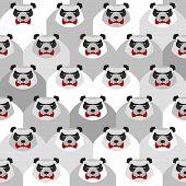 picture of panda bear  - Angry Panda - JPG