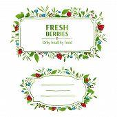 stock photo of strawberry plant  - Beautiful banner - JPG