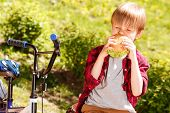 image of sitting a bench  - So hungry - JPG