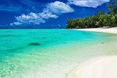 image of tropical island  - The best swimming beach with palm trees on tropical island Rarotonga - JPG
