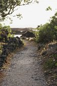 stock photo of scoria  - a path winds around the rocky shore of rangitoto island hauraki gulf new zealand - JPG