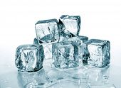 melting ice cubes
