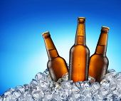 stock photo of ice-cubes  - Three beer bottles getting cool in ice cubes - JPG