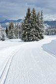 Freshly groomed empty cross-country ski track at French Alps