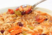 Minestrone Soup 1667