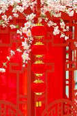 Chinese Traditional Red Lantern