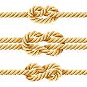 Nudos de la cuerda. Vector.