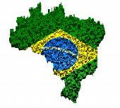 Brazilian flag mounted with blocks