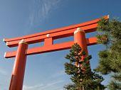 Kyoto Torii Gate