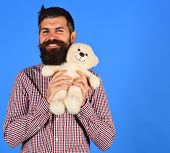 Man Holds Teddy Bear On Blue Background. Man With Beard poster