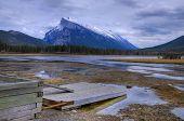 Swampy mountain lake