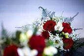 Blurred Bouquet