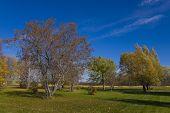Beautiful Golf Course In The Fall Season