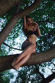 Pretty Model In A Black Bikini Swimsuit. On A Tree On An Island. poster