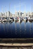 Boats In Marina With Masts Reflecting