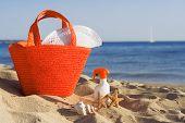 Zomervakantie strand In Mallorca