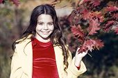 Hello October. Small Girl Play On Fresh Air On Sunny Autumn Day. Little Child Walk In Autumn Park. H poster