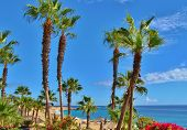 Cabo San Lucas Resort Beach
