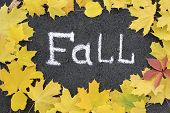 The Inscription In White Chalk On Asphalt Fall And Yellow Maple Leaves Around The Inscription. The F poster