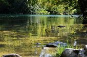 Mountain Forest River Reflection Landscape. Forest River Reflection In Mountains. River Valley In Mo poster