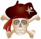 Skull With Pirate Hat Illustration