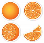 Set fresh orange fruits