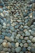 Rock Streambed