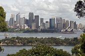View Of Sydney Harbour From Taronga Zoo, Australia.