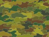 Background Illustration of Camouflage Print