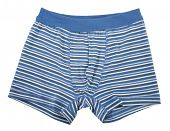 stock photo of boxer briefs  - Blue striped boxer shorts underwear - JPG