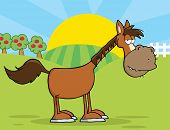Horse Cartoon Mascot Character