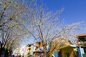 Colorfull Street In Caminito.