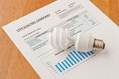 pic of economizer  - Energy efficient CFL bulb on electric bill - JPG
