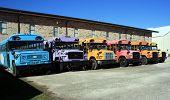 Rainbow Busses