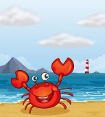 Illustration of a crab at the seashore