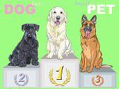Vector Happy Dog Champion On The Podium