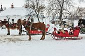 Horses With Sledge In Suzdal, Russia