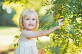 Baby Girl Playing With Tree Foliage