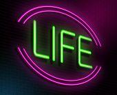 Life Concept.
